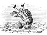 Frau Holle (Illustrationen)