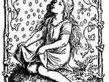 Die Sterntaler (Illustrationen)