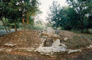 Necropoli del Puntone Manciano