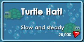 TurtleStore