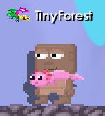 TinyForest's Axolotl Scarf
