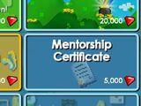 Mentorship Certificate