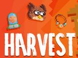 Harvest Festival/2021