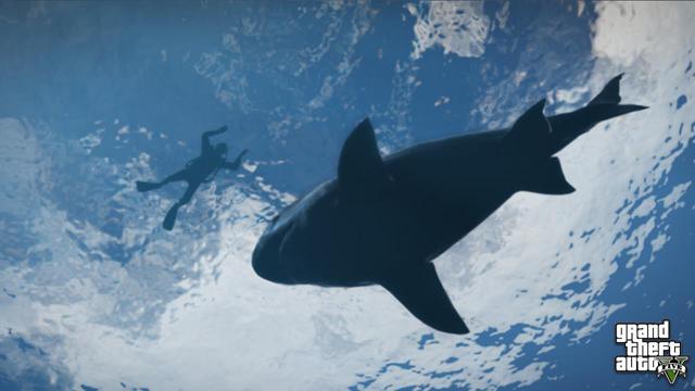 Sharks (GTA V)