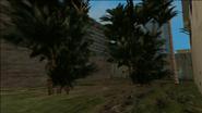 VC-AbandonedParkInside2