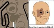 Geyser comparison