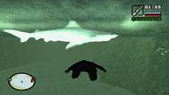 Shark (GTA SA)