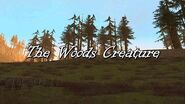 Grand Theft Auto San Andreas Myths and Legends - Myth 3 - The Woods Creature (Part 1)