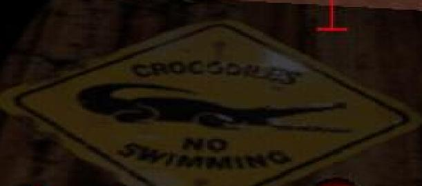Crocodiles (GTA Vice City)