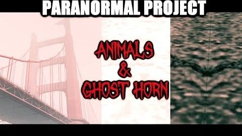 GTA_San_Andreas_Myths_._Animals_&_Ghost_horn_-_PARANORMAL_PROJECT_5