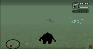 SharkGTADarkMythHunter