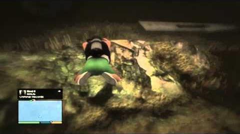 GTA5-_How_to_find_the_Merryweather_plane_in_the_Alamo_Sea!