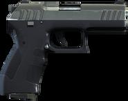 Pistolet bojowy (V)