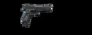 Pistolet wer.2 (V)