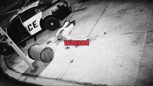 Gta-v-wasted
