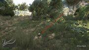 Peyote Plants GTAVe 22 El Burro Parking View.jpg