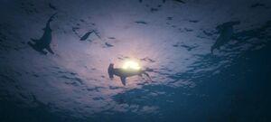 Sharks-GTAV-nextgen.jpg