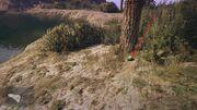 Peyote Plants GTAVe 05 Mt Gordo View.jpg