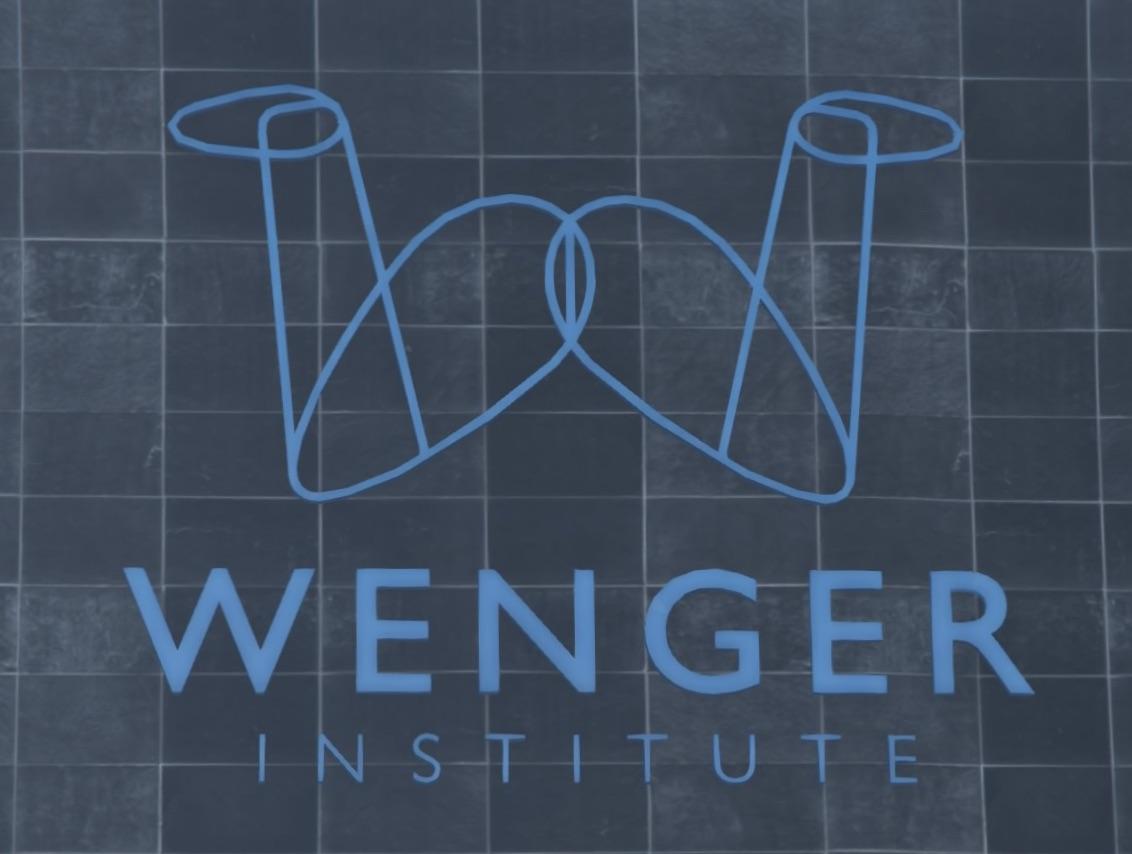 Wenger Institute