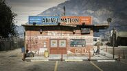 Ammu-Nation store
