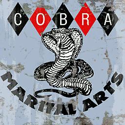 Cobra Marital Arts Gym