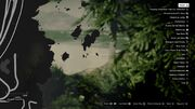 Peyote Plants GTAVe 21 East Island Map.jpg