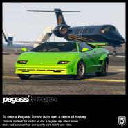 Pegassi Torero Publicité-2 GTA Online