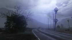Seaview Road