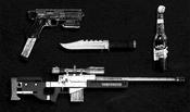 TheCayoPericoHeist-GTAO-PrepBoardImg-WeaponLoadout-03CrackShot.png