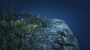 HiddenCaches-GTAO-Location95.png