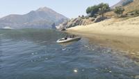 BikerSellBoats-GTAO-Countryside-CapeCatfish-DropOff1.png