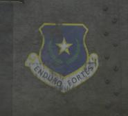 Savage GTAVe Badge2