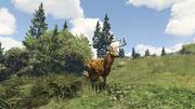 Peyote Plants Animals GTAVe Deer.png