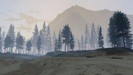 PaletoForest-GTAV-northview