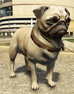 Pug-GTAV-PS4