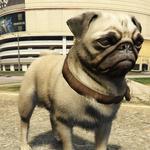 Pug-GTAV-PS4.png