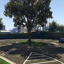GWCandGolfingSociety-GTAV-Parking.png
