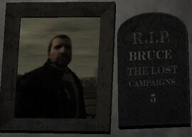 Bruce-TLAD