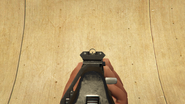 CompactRifle-GTAV-Sights