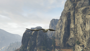 Peyote Plants Animals GTAVe Seagull.png