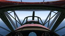 Duster-GTAV-Dashboard