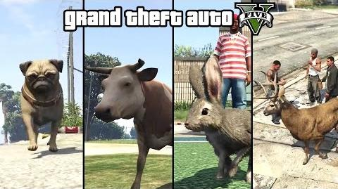GTA 5 - Play as an Animal (Dog, Cat, Cow, Boar, Rabbit, Deer & more) PS4 & Xbox One