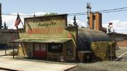 AmmuNation-PaletoBay-GTAV
