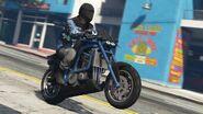 Akuma-GTAV-RockstarGamesSocialClub2019-ActionMP