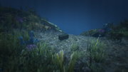 HiddenCaches-GTAO-Location96.png