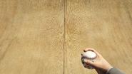 Ball-GTAV-Holding