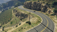 BuenVinoRoad-GTAV-Vineyards2