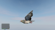 Peyote Plants Animals GTAVe Pigeon.png
