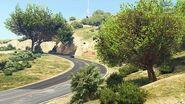 GTA Online Time Trial - Vinewood Hills Under Par Time