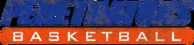 PenetratorsBasketball-GTAO-LogoWorn
